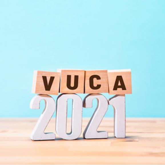 A stewards response to a VUCA world.