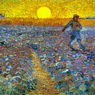 The Sower: A Book Review