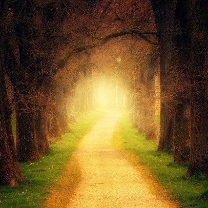 A proactive path that glorifies God.